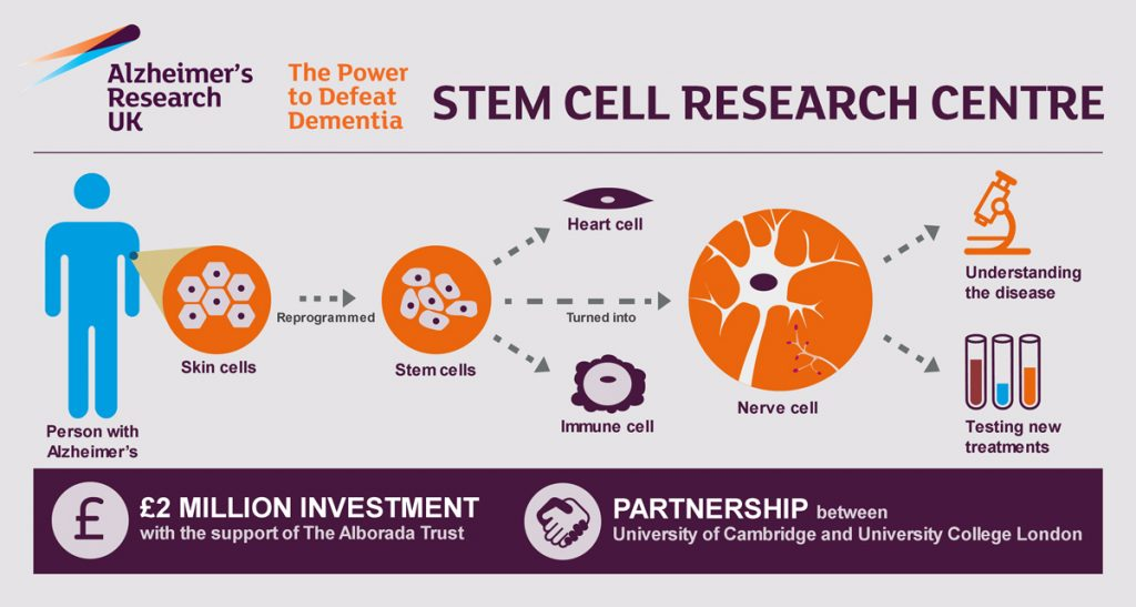 Stem cell Research Centre Infographic